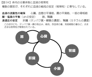 器官の分業体制